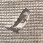 石膏ボードの穴埋め方法や使用パテは?棚付けやピンの種類も